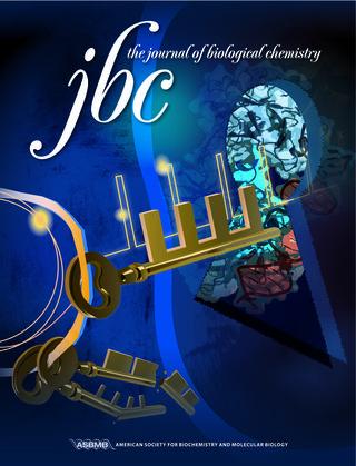 学術雑誌jbc_甲斐先生20130424