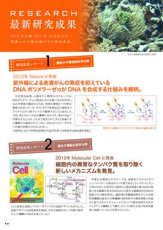 Newsletter2013_P01